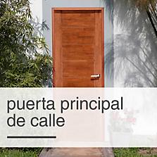 Puerta Principal de Calle