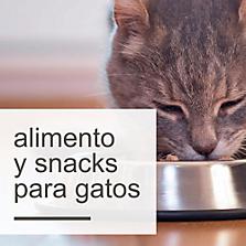 Alimentos y Snacks para Gatos
