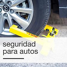 Seguridad para autos