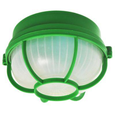 Trotuga de plástico redonda verde
