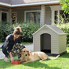 Accesorios para perros