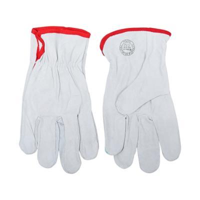 Propack 10 unidades guantes cabritilla