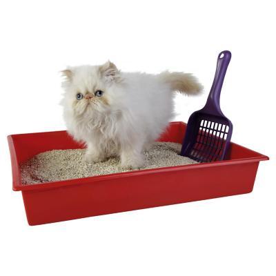 Pala sanitaria para gato plástica