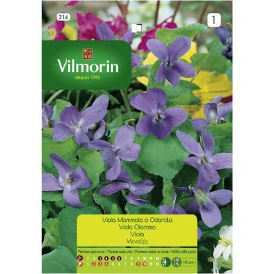 Semilla flor violeta 4 estaciones 5 gr sachet