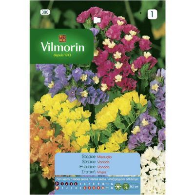 Semilla flor statice simiata 5 gr sachet
