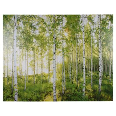 Papel fotomural Bosque haya 368x254 cm 8 paneles