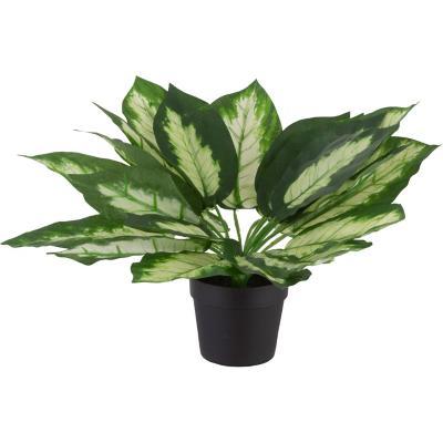 Dieffenbachia artificial 28 cm verde