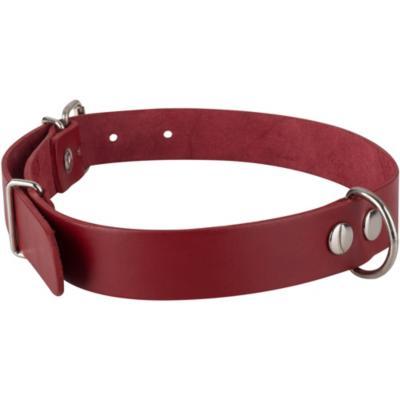 Collar para perro 75x3 cm de suela Rojo