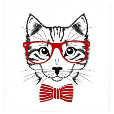 Canvas decorativo Hipster Cat 50x50 cm