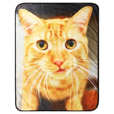 Manta para gato 76x102 cm poliéster