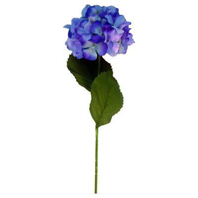 Vara Hortensia 75 cm purpura