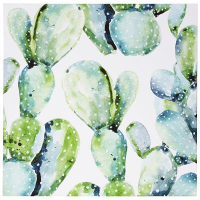 Canvas Cactus 70x70 cm