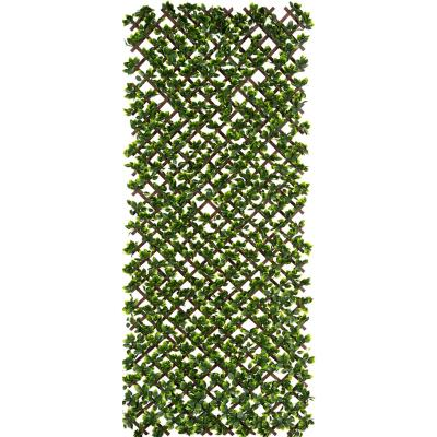 Cerco Treillage extensible Hiedra 100x200 cm