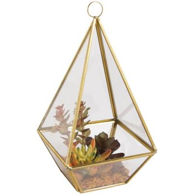 Suculenta piramide otoño 25 cm
