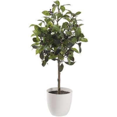 Árbol pepita maceta 53 cm