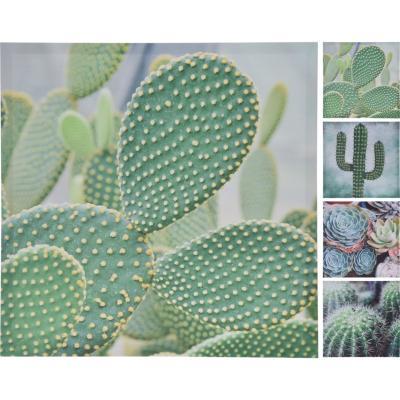 Cuadro cactus 58x58 cm diseño surtido
