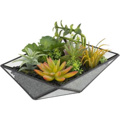 Terrario artificial colgante rectangular vidrio 15x20 cm