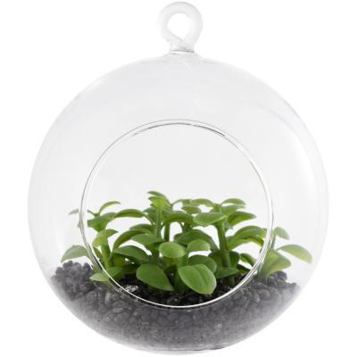 Terrario artificial colgante vidrio 15 cm