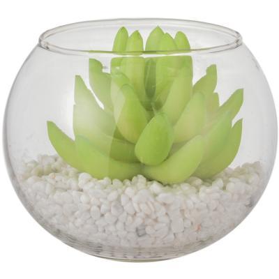 Suculenta artificial pecera vidrio 9 cm