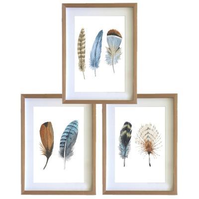 Set 3 cuadros 30x40 cm marco madera plumas café y azul