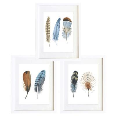Set 3 cuadros 40x50 cm marco  plumas café y azul