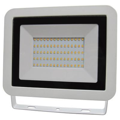 Reflector 50 W luz fria blanco