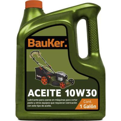 Aceite 10W30 galón