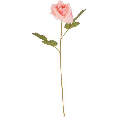 Rosa 50 cm rosado