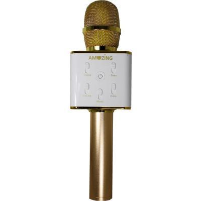 Micrófono parlante karaoke bluetooth dorado con estuche