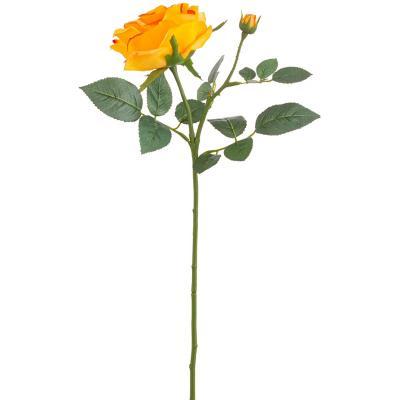 Rosa maggi 70 cm amarillo