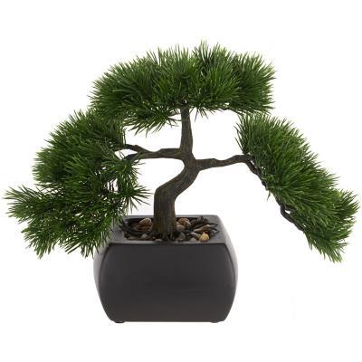 Bonsai 23 cm hoja pino