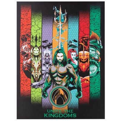 Canvas Aquaman Unite the Kingdom 60x80 cm