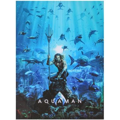 Canvas Aquaman 60x80 cm