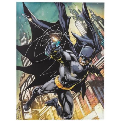 Canvas Batman Night Grapple Gun 60x80 cm