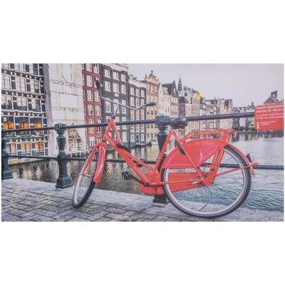 Canvas bicicleta 40x70 cm