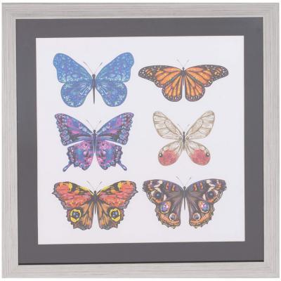 Cuadro conjunto mariposa 50x50 cm