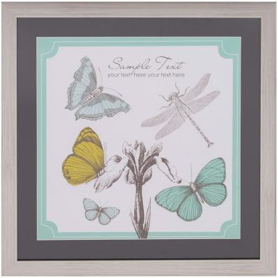 Cuadro mariposa libelula 50x50 cm