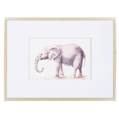 Cuadro 80x60 cm dibujo de elefante