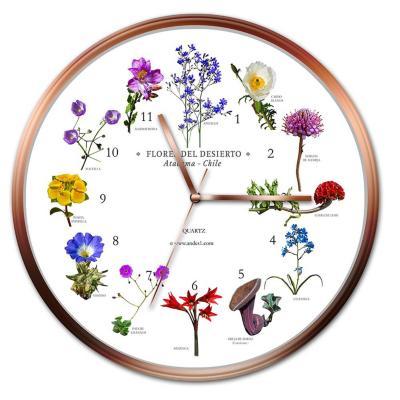 Reloj pared flores desierto de atacama