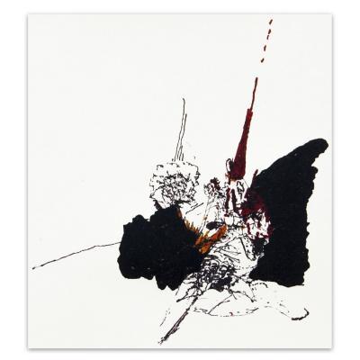 Grabado Estudio de Flores artista Paloma Maturana 35x50 cm