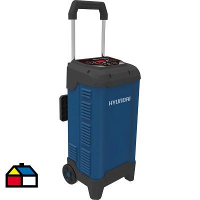 Cargador de batería 12/24V 30 A