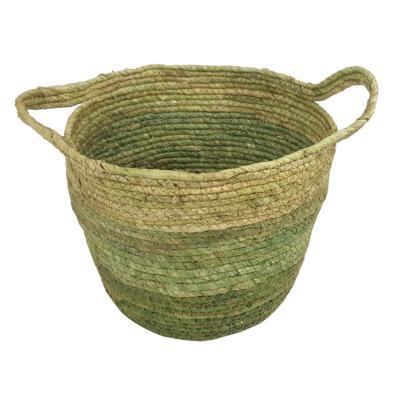 Canasto de maíz verde