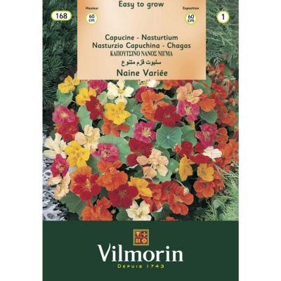 Pack de semillas flores fáciles de conseguir