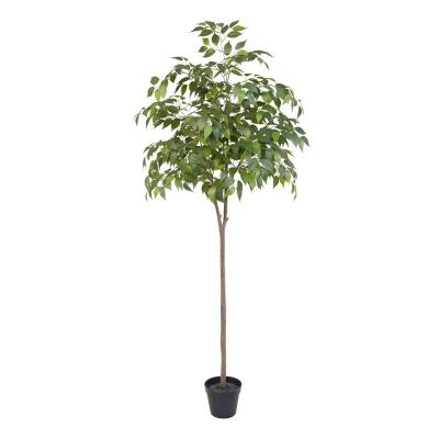Planta artificial mini Ficus 160 cm