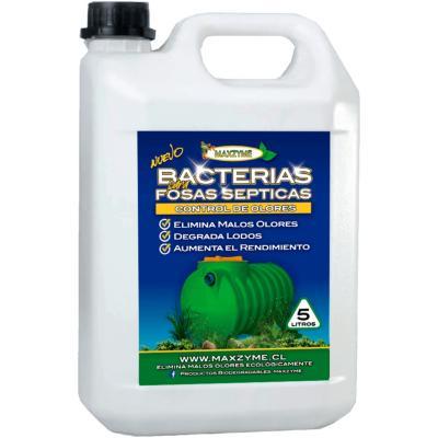 Bacterias para control de olores en fosas sépticas