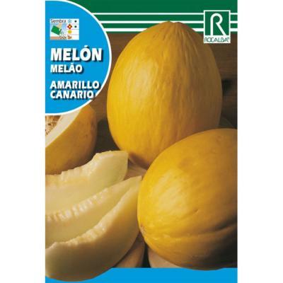 Semilla melón amarillo
