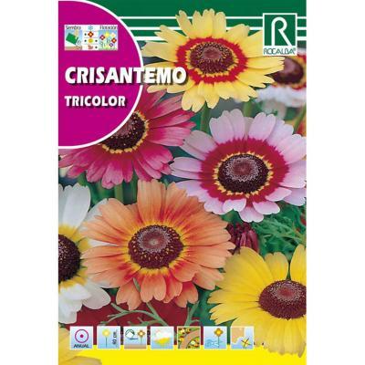 Semilla crisantemo tricolor