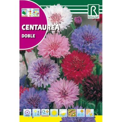 Semilla centaurea doble