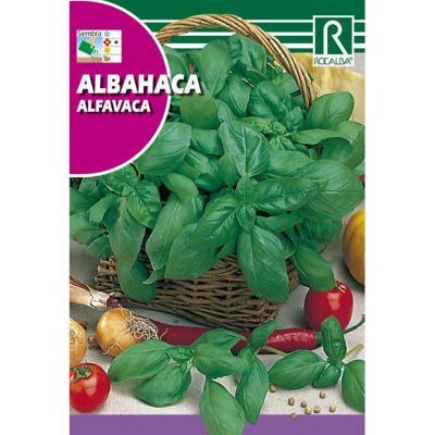 Semilla albahaca
