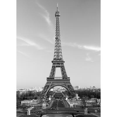 Fotomural torre eiffel 183x254